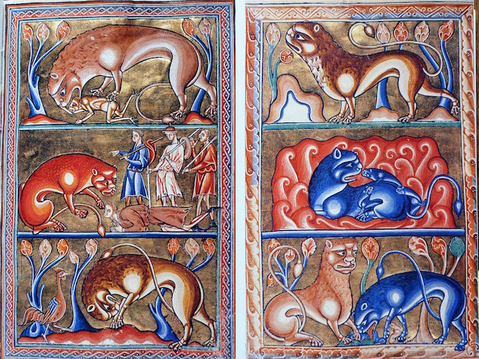 Fig 1. Illumination from the Bestiary either as opening or in the passage on the Bestiaries.
